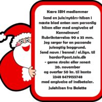 Juleannonce